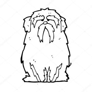 cachorro-velho