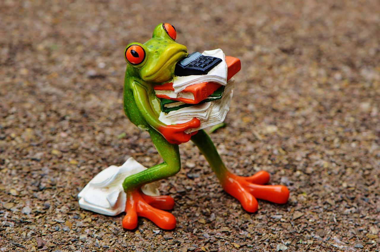 frog-1339892_1280