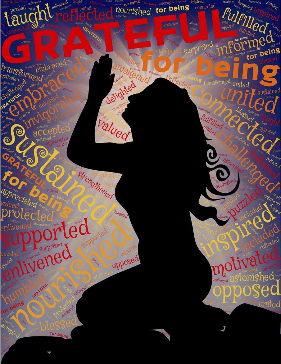 31 motivos para você ser grato